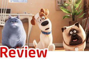Review 'The Secret Life of Pets': Trong sáng, hài hước và dễ thương khó cưỡng