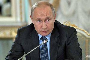 Đối thoại trực tuyến với Tổng thống Nga Putin sẽ diễn ra vào ngày 20/6