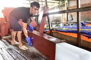 Ảnh, clip: Đột nhập đại công xưởng 'vàng lạnh' ở đất vải Lục Ngạn