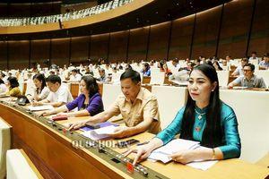 Quốc hội thông qua giám sát tối cao việc phòng, chống xâm hại trẻ em