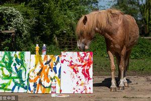 Lộ 'bí kíp' khiến ngựa thông minh vẽ được tranh tài tình