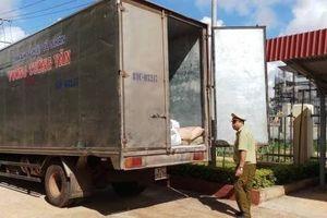 Tóm gọn xe tải chở số lượng lớn bột mì không có hóa đơn, chứng từ
