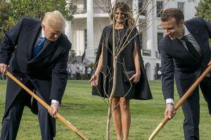'Cây sồi tình bạn' giữa ông Trump và Tổng thống Pháp Macron đã bất ngờ chết