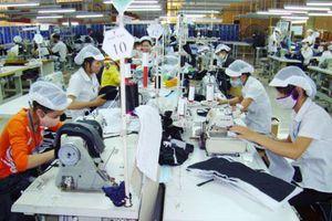 Doanh nghiệp Việt Nam ít thông tin để tận dụng cơ hội từ các FTA