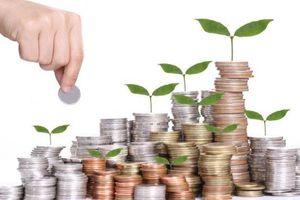 18 quỹ rót 425 triệu USD đầu tư start-up Việt