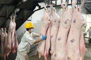 Hệ thống Saigon Co.op: Trắng đêm kiểm soát thịt heo vào siêu thị