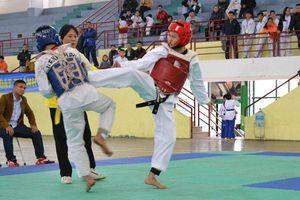 Taekwondo Hà Nội: Tiềm năng phát triển lớn