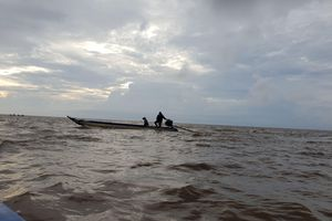 Hàng loạt sai phạm tại Vườn quốc gia mũi Cà Mau
