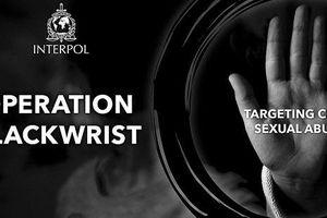 Interpol phá đường dây ấu dâm xuyên quốc gia, giải cứu 50 trẻ em