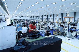 Fitch Ratings đánh giá tích cực về triển vọng kinh tế Việt Nam