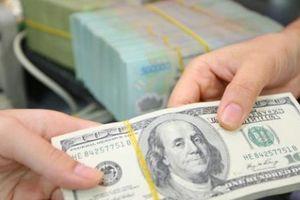 Giá USD hôm nay 11/6 giảm mạnh