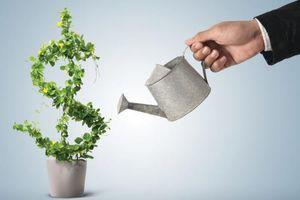 Tiền từ quỹ ngoại