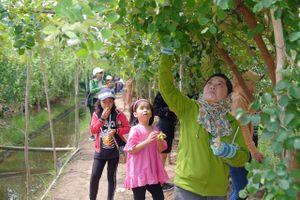 Nhà vườn làm du lịch