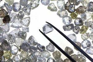 Cảnh sát Nga: Bắt nhóm trộm kim cương trị giá lên đến 3 triệu đô la