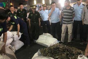 Bắt 5 tấn vảy tê tê giấu trong lô hàng hạt điều nhập khẩu