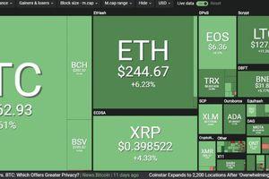 Bitcoin vọt lên 8.000 USD rồi bất ngờ 'đổ đèo'