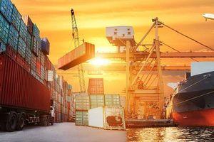 CTCP Vận tải 1 Traco bị phạt 350 triệu đồng vì không đăng ký giao dịch chứng khoán