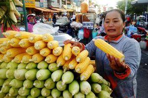 Bắp luộc bùng binh bán hơn 600 trái/ngày khiến Việt kiều tìm đến: 'Tôi bán đến khi chết!'