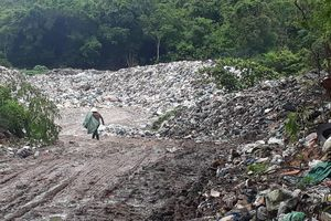 Người dân chặt cây, chặn xe vào bãi rác tạm ở Phú Quốc vì ô nhiễm