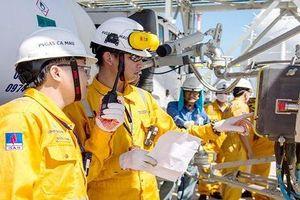 Khẳng định vai trò 'đầu tàu' kinh tế của PVN