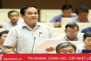 Đại biểu Quốc hội Hà Tĩnh: Cần bổ sung quy định về khai báo hộ chiếu điện tử trên nền internet