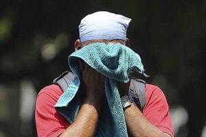 Nhiệt độ tăng cao kỷ lục tại Ấn Độ, ít nhất 36 người thiệt mạng