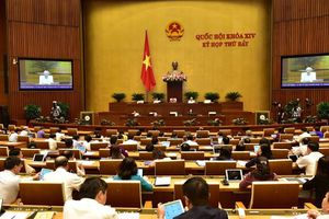 Quốc hội thảo luận về Dự án Luật xuất cảnh, nhập cảnh của công dân Việt Nam
