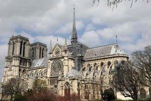 Diện mạo mới đầy táo bạo của nhà thờ Đức Bà Paris