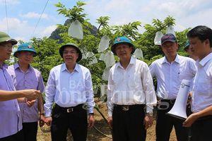 Lạng Sơn: Đưa khoa học và công nghệ phát triển sản phẩm chủ lực