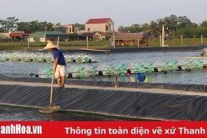 Huyện Tĩnh Gia tháo gỡ khó khăn trong xây dựng nông thôn mới
