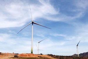 Vietnam needs stable legal framework for wind power: workshop
