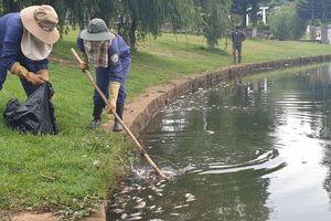 Cá chết bốc mùi hôi thối nổi đầy hồ ở TP Bảo Lộc, Lâm Đồng