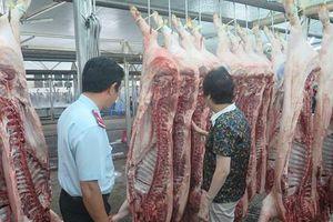 TP Hồ Chí Minh: Khẩn cấp phòng, chống bệnh Dịch tả lợn châu Phi