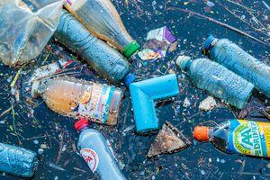 Cảnh báo về lượng nhựa mà con người hấp thu