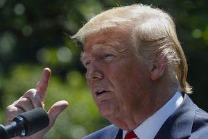 Ông Trump lên tiếng về cuộc biểu tình ở Hong Kong