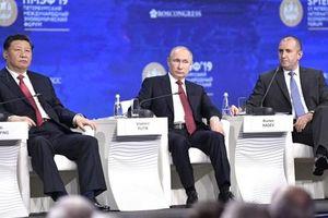 Trung Quốc kêu gọi hiểu đúng cách dùng tục ngữ 'hổ và khỉ' của ông Putin