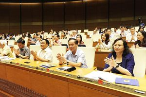 Luật Quản lý thuế và Luật đầu tư công được Quốc hội thông qua