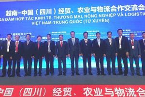 Thúc đẩy hợp tác kinh tế - thương mại Việt Nam - Trung Quốc