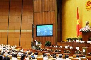 Thông qua Luật Quản lý thuế (sửa đổi)