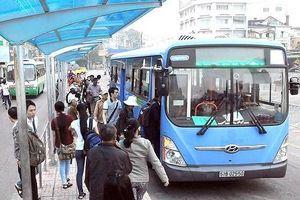 Giảm nguồn khí gas, hoạt động xe buýt đảo lộn