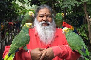 Kỳ quặc 'vua chim' được hàng trăm con chim 'yêu' sau tai nạn