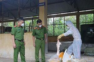 Lạng Sơn: Thu giữ 6 tạ nầm lợn nhập lậu bốc mùi hôi thối