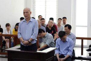 Phạt tù dàn cán bộ công ty Nhà Hà Nội vì 'làm bậy'