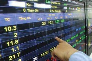 Doanh nghiệp vi phạm công bố thông tin: Nhà đầu tư thiệt đơn, thiệt kép