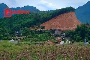 Đất rừng tiếp tục bị 'xẻ thịt'công khai, chính quyền tỉnh Hòa Bình cần mạnh tay xử lý