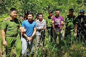 Bắt đối tượng thứ 5 trong vụ đầu độc hơn 10ha rừng thông ở Lâm Đồng
