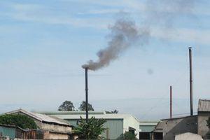 Cử tri thành phố Vinh phản ánh ô nhiễm môi trường tại cụm công nghiệp Hưng Lộc