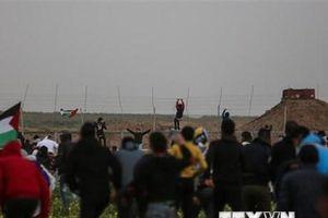 Palestine kêu gọi các nước Arab cân nhắc việc tham dự hội thảo của Mỹ