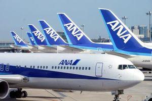 Nhật Bản: Phi công có nồng độ cồn khi bay bị phạt 3 năm và 4.600 USD