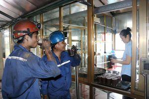 Tập đoàn Công nghiệp Than - Khoáng sản Việt nam (TKV): Dành mọi ưu tiên quan tâm, chăm sóc công nhân mỏ